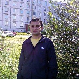 анатолий, 37 лет, Заозерск
