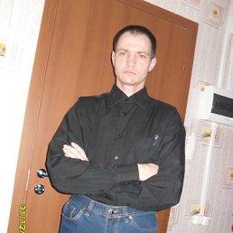 николай, 39 лет, Салаир