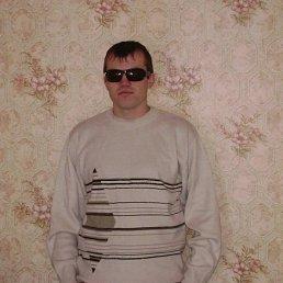 Серега, 28 лет, Бердяуш