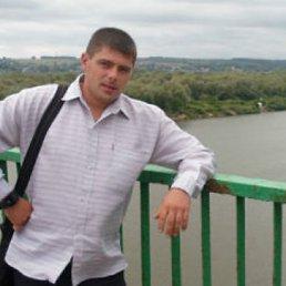 Николай, 37 лет, Калязин