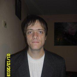 Саша, 30 лет, Костополь