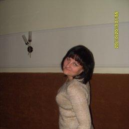 Диана, 33 года, Липецк