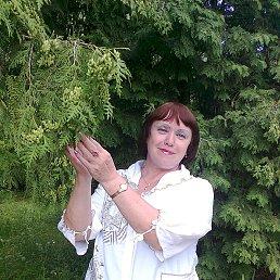 Наталья, 64 года, Котовск