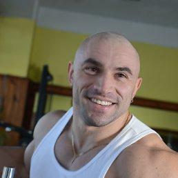 GRANDHEROKE, 38 лет, Киев