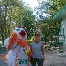 Александр, 29 лет, Можга