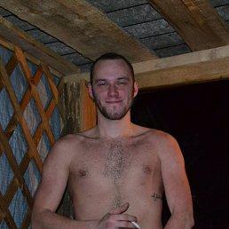 Николай, 28 лет, Москва - фото 2