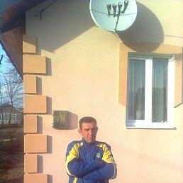 МИША, 50 лет, Стрый