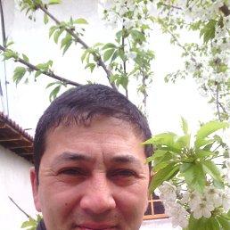 Фото Музаффар, Ташкент, 45 лет - добавлено 25 апреля 2014