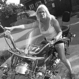 Светлана, 51 год, Ивантеевка
