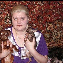 Евгения, 44 года, Глазов