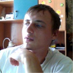 Никита, 28 лет, Орел