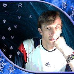 Анатолий, 44 года, Гребенка