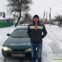 Николай, 38 лет, Калининская