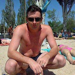 Дмитрий, 41 год, Белозерское