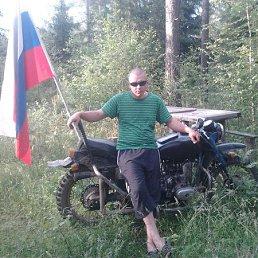 Александр, 30 лет, Южа
