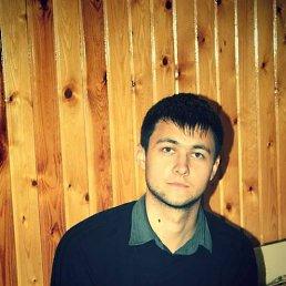 Александр, 29 лет, Луга