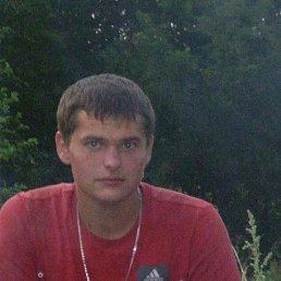 Колян, 29 лет, Сычевка