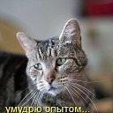 Фото Оксана, Ижевск, 54 года - добавлено 30 апреля 2014