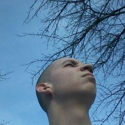 Александр, 25 лет, Никополь