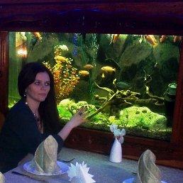Фото Татьяна, Зугрэс, 44 года - добавлено 29 января 2014