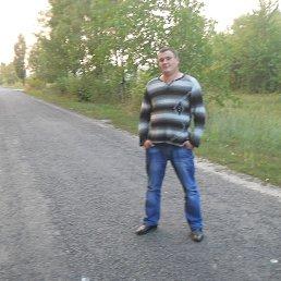 Генадий, 35 лет, Крыжополь