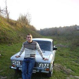 Серёжа, 27 лет, Балта