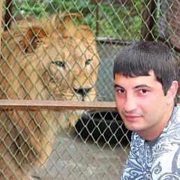 Фёдор, 28 лет, Старобешево