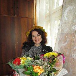 елена, 50 лет, Боровск