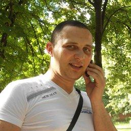 Сергей, 32 года, Олевск