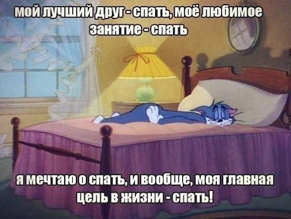 спать любит меня картинки проверить исправность монитора