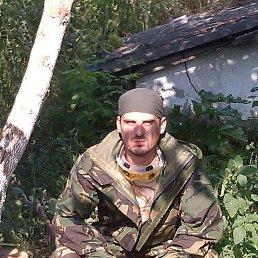 Минкин, 41 год, Макаров