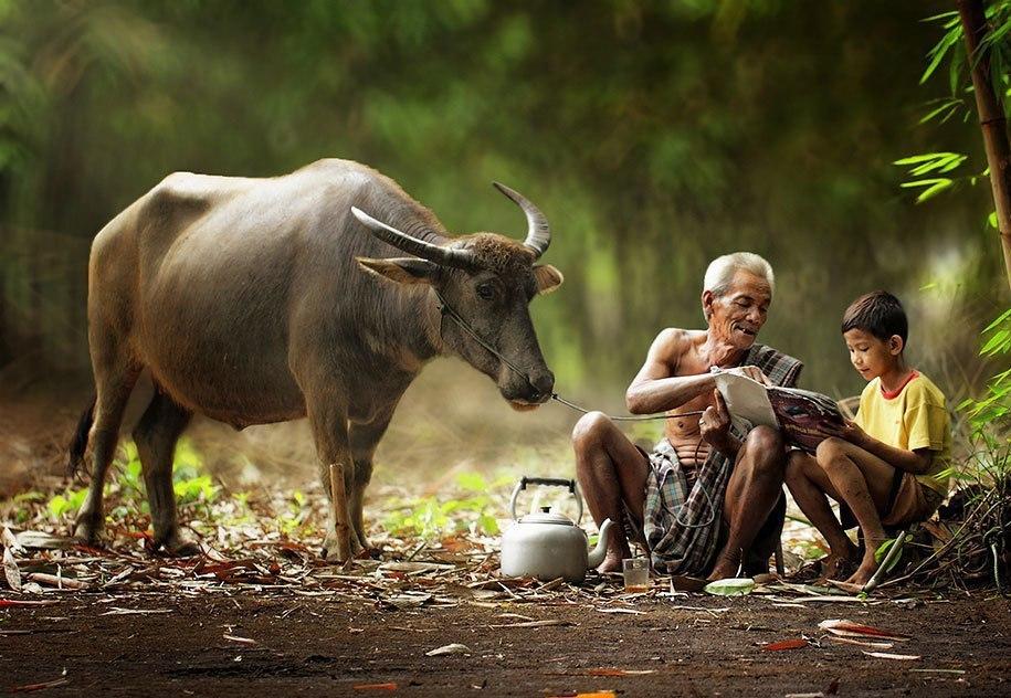Будни сельских жителей Индонезии в ярких фотографиях Германа Дамара - 4