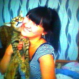 Людочка, 30 лет, Борисполь
