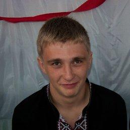 Олексій, 24 года, Рава-Русская