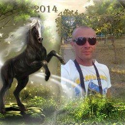 Алексей, 33 года, Тетиев