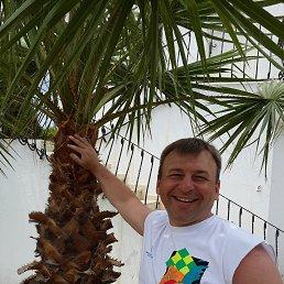 Денис, 43 года, Бронницы