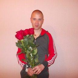 Фото Sergey, Чернигов, 33 года - добавлено 31 мая 2014