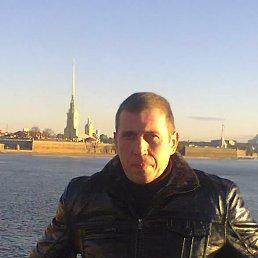 Александр, 45 лет, Камень-Каширский