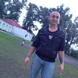 Андрей, 27 лет, Синельниково