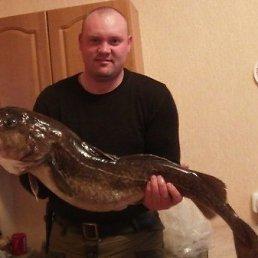 АЛЕКСАНДР, 37 лет, Курильск