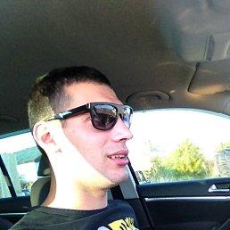 Руслан, 29 лет, Сокол