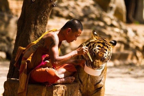 Если хотите в этой жизни попробовать все, попробуйте быть добрым, чeстным и нeиспорчeнным.