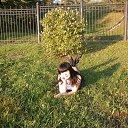 Фото Дашуля=), Хабаровск, 28 лет - добавлено 10 октября 2014