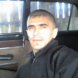 Александр, 39 лет, Кураган