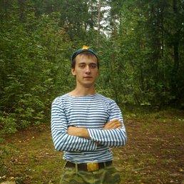 денис, 28 лет, Электрогорск