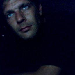 Фото Сергей, Саки, 43 года - добавлено 19 ноября 2014