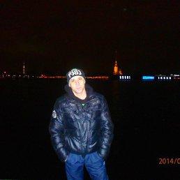 Дмитрий, 36 лет, Щорс