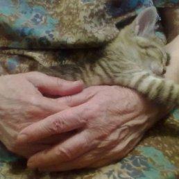 Елена, 58 лет, Ульяновск - фото 2