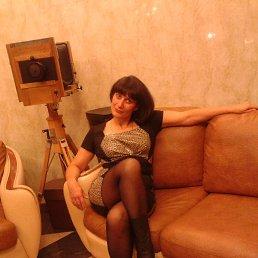 Тамара, 55 лет, Великий Новгород