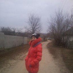 Алина, 24 года, Прилуки